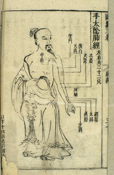 17th C Chinese acupuncture chart, lung channel of hand taiyin. (Image: Wellcome Library, London. Wellcome Images images@wellcome.ac.uk http://wellcomeimages.org/CC BY 4.0) 17th century Chinese woodblock illustration showing the course of the lung channel of hand taiyin, with the acu-moxa locations marked and labelled. The lung channel of hand taiyin is one of the Twelve Channels. It originates at the zhongfu (Middle Palace) point and terminates at the shaoshang (Lesser Shang) points. There are approximately 22 acupoints on this channel, including zhongfu (Middle Palace), yunmen (Cloud Portal), tianfu (Palace of Heaven), xiabai (Clasping the White), chize (Foot Marsh), kongzui (Utmost Opening), lieque (Break in the Sequence), jingqu (Channel Ditch), taiyuan (Great Abyss), yuji (Fish Border) and shaoshang (Lesser Shang). These points are mainly used in the treatment of pulmonary complaints such as coughs and asthma, soreness and inflammation of the throat, cold pain in the shoulders and back and pain in the inner and frontal parts of the hand and arm. See also Image L0037869. Woodcut Library of Zhongguo zhongyi yanjiu yuan (China Academy for Traditional Chinese Medicine) Lei jing tu yi (Illustrated Supplement to the Classified Canon) Zhang Jiebin Published: 1621-1627 Copyrighted work available under Creative Commons Attribution only licence CC BY 4.0 http://creativecommons.org/licenses/by/4.0/